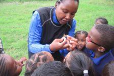 The children feeding a grasshopper